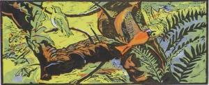 Redstart and Woodwarbler