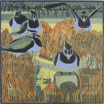 Lapwings and Seablite