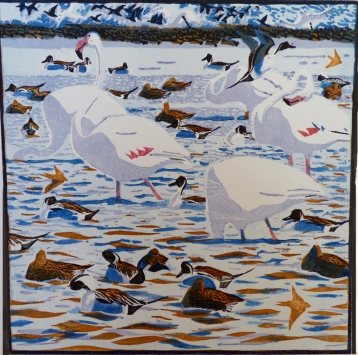 Flamingos and Pintail