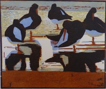 Oystercatchers, Evening