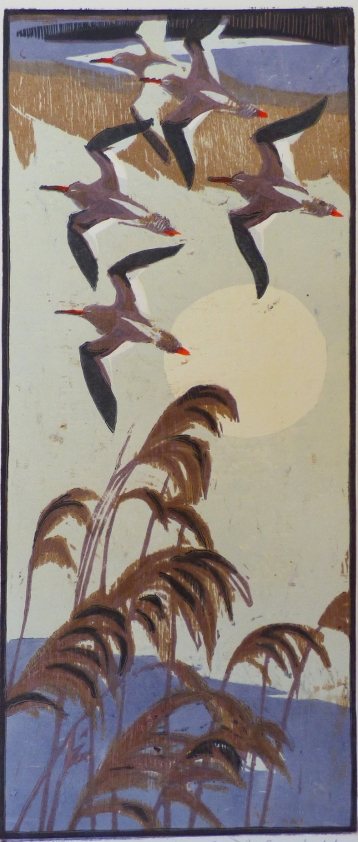 Redshank and Reeds