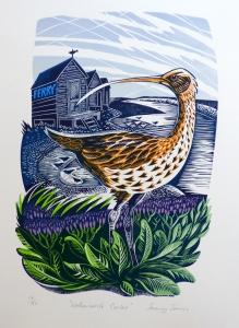 Walberswick Curlew