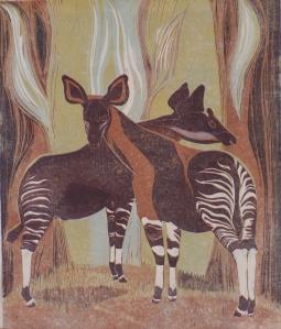 Okapis