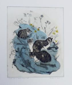 Cats at a Welsh Farm